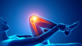 日本【膝の痛み】研究所