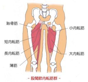 膝の痛み,内側,曲げると痛い