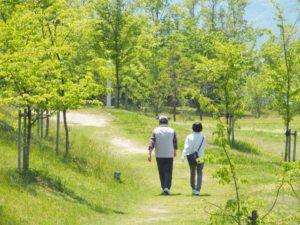 歩行,膝の痛み,原因